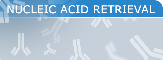 NUCLEIC-ACID-RETRIEVAL-1